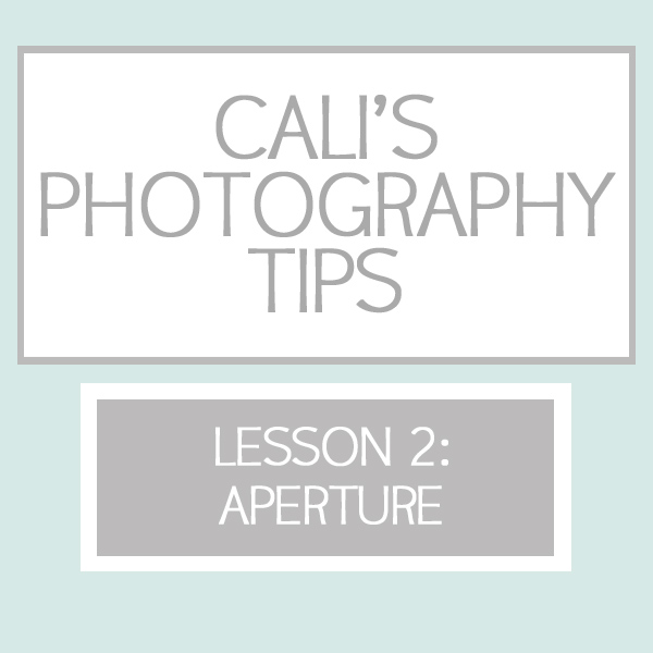CalisPhotographyTips2